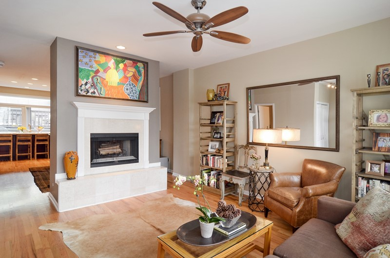 East Village - 537 North Hartland Court, Chicago, IL 60622 - Living Room
