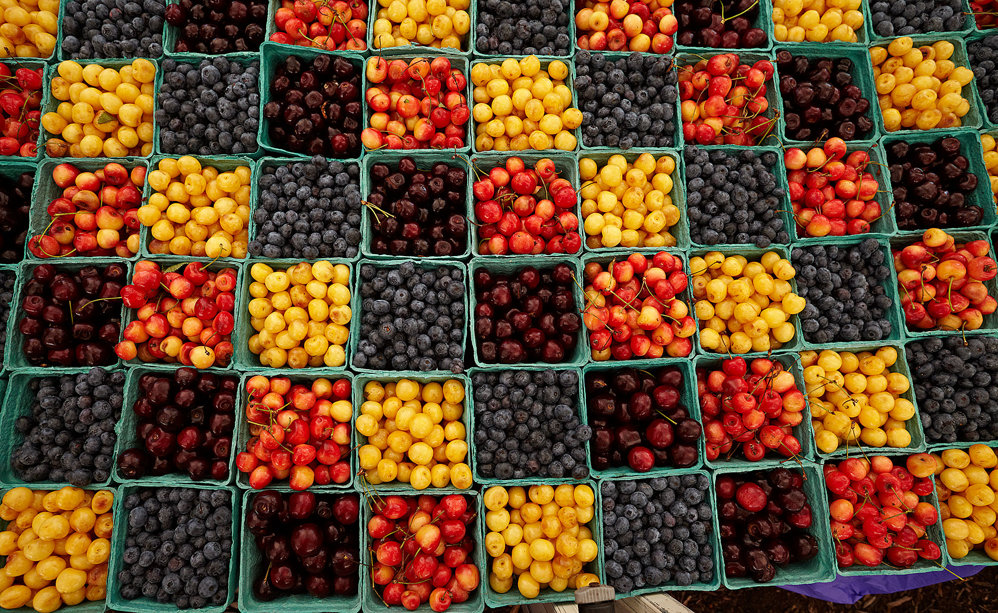 Green City Market - Fruit